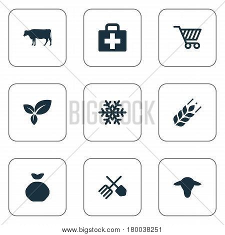 Vector Illustration Set Of Simple Harvest Icons. Elements Sack, Buffalo, Plant And Other Synonyms Sack, Frost And Equipment.