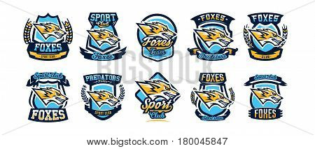 Set of colorful emblems, logos, stickers, aggressive fox is ready to attack, the predator. Vector illustration, dynamic and sport style, printing on T-shirts.