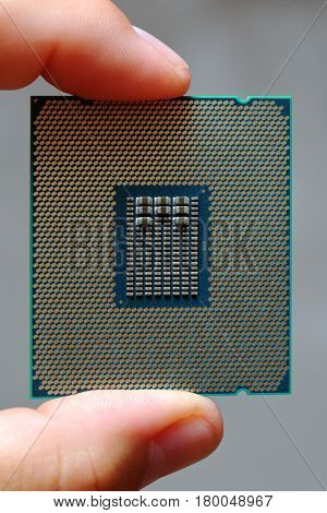 The fingers of man hold a modern central processor unit CPU macro