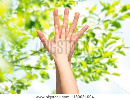 family, childhood, fatherhood and people concept - father and child holding hands together over green natural background