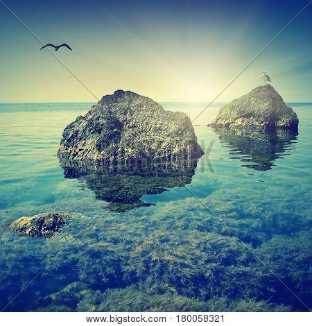 Crimea Seascape_1