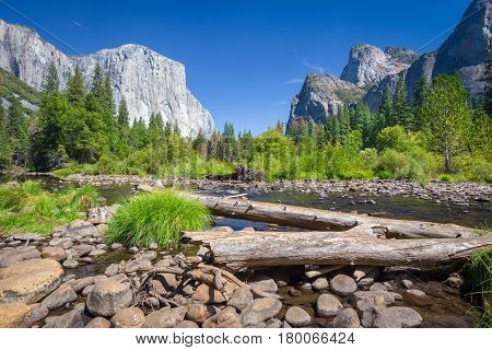 Yosemite National Park In Summer, California, Usa