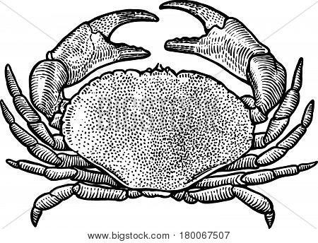 Lobster, seafood, shellfish, fish, claw, culinary, luxury, meat, crustacean, cuisine, dinner, elegance, expensive, food, gourmet, legs, meal, pincers, sea, shell, one, single, animal, nature, engrave, engraving, sketch, black, monochrome, quality, contour
