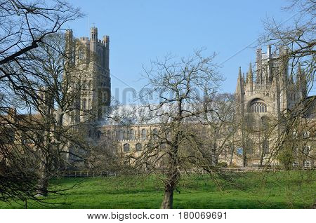 Ely Cathedral through trees from meadow to south