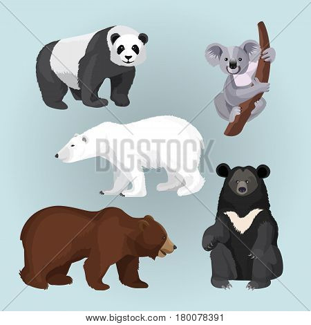 Set of standing, sitting and creeping bears isolated on blue. Vector illustration of white and brown bear side view, heavy panda, north American teddy with honky collar and gray koala on tree branch.