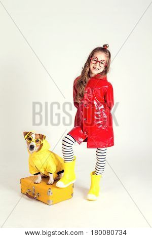 The fanciful dog Jack Russell Terrier wears a yellow raincoat and glasses. He sits on a suitcase and looks into the camera. Nearby is a beautiful girl in a raincoat, one leg is put on a suitcase. The picture is taken in the studio and has a white backgrou