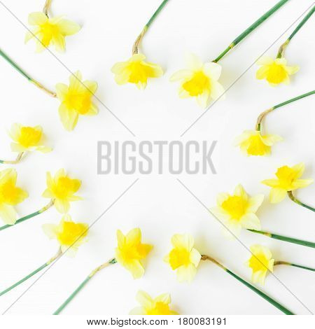 Yellow frame of narcissus on white background. Flat lay, top view. Floral background.