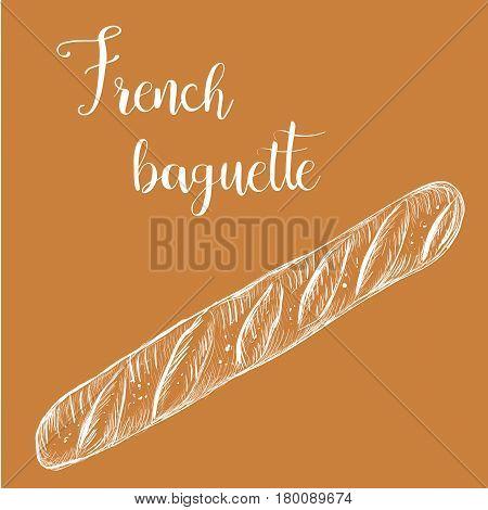 French baguette. Bread long loaf sketch illustration vector