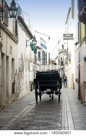 CORDOBA, SPAIN - JULY 19, 2016: Cordoba (Andalucia Spain): a traditional coach along a street of the Juderia