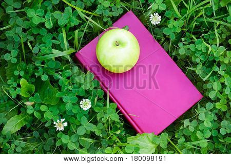 Apple and book on grass. Education concept back to school.