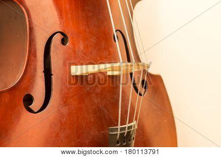 Contrabass Wooden Instrument Details