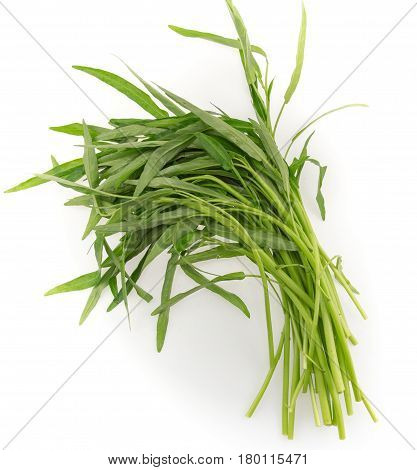 Fresh Water spinach isolated on white background