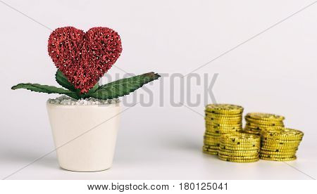 Love before money concept on white background