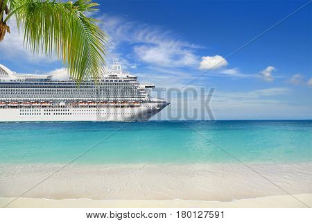 Tropical beach with palm tree and cruise ships