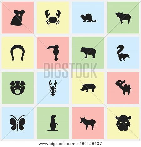 Set Of 16 Editable Zoology Icons. Includes Symbols Such As Crawfish, Panda, Hog. Can Be Used For Web, Mobile, UI And Infographic Design.