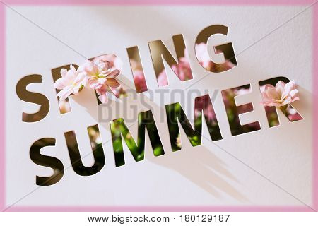 Perforated text on paper card, cutting style with words of Spring and Summer and decorated pink flowers. Copy space . Modern background for promotion Retail profile, discount, Seasonal events