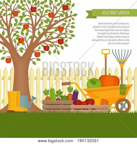 Vegetable Garden. Concept Of Gardening. Banner With Vegetable Garden. Organic And Healthy Food. Flat
