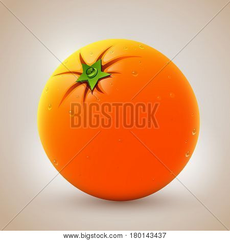 Realistic fresh orange with waterdrops. Vector illustration