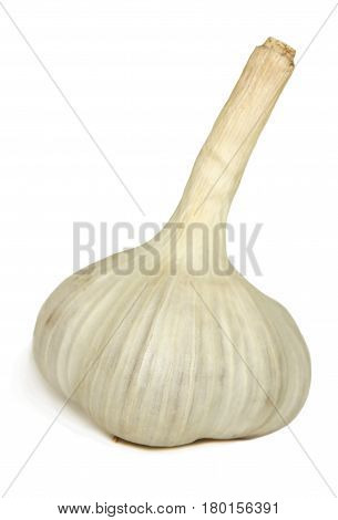 Head of garlic close-up isolated on white background