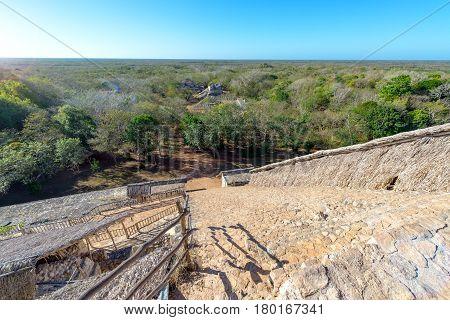 Ek Balam Stairs And Jungle
