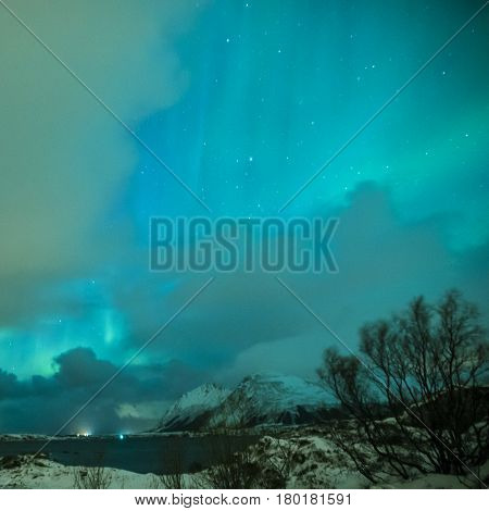 Aurora Borealis Known as Nother Lights Playing with Vivid Colors Over Lofoten Islands in Norway. Square Image Composition