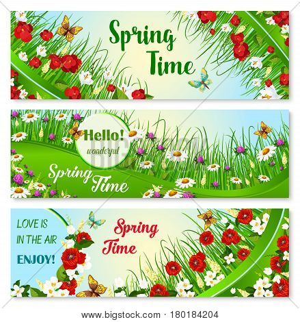Hello Spring vector banner set. Springtime blooming flowers and greeting quotes. Welcome Spring Time floral design with butterflies on poppy blooms and daisy fields or green grass meadows