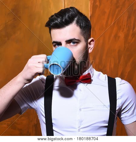 bearded man long beard brutal caucasian hipster with moustache in white shirt and suspenders with bow-tie drinking from blue cup of tea or coffee with serious face on brown studio wall background