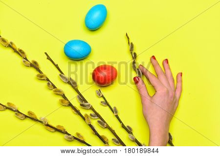 Spring Willow Branch, Female Hand With Colorful Painted Easter Eggs