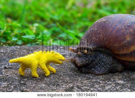 Yellow dinosaur puppet and Giant snail in garden. Funny monsters macro photo. Small animal with shell. Lost toy concept image. Land mollusk Achatina fulica in green grass. Tropical environment ecology
