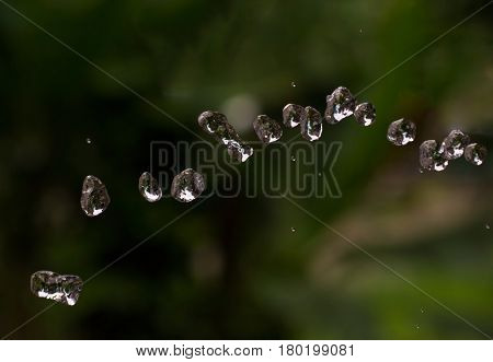 Water drops on natural background. Aqua drops flying in air. Rain drops on dark green garden backdrop. Transparent and clear water beads. Watering garden from hose. Water supply stream macro photo