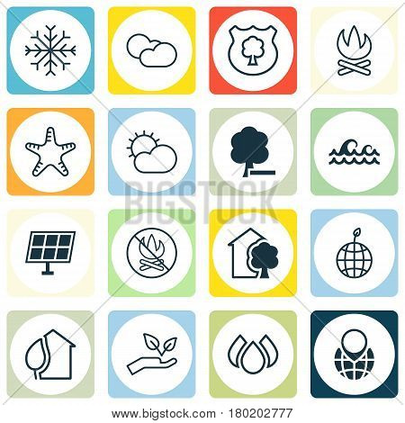 Set Of 16 Eco-Friendly Icons. Includes Timber, Fire Banned, Bonfire And Other Symbols. Beautiful Design Elements.