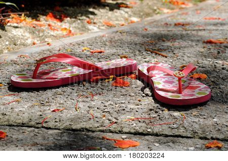 pair of slippers A pair of red slippers on a rough pavement is surrounded by fallen flame tree flowers