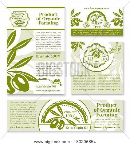 Olives business banner template set. Olive oil farm business card, italian cuisine restaurant brochure, extra virgin oil poster with sketched olive tree branch, fruit and bottle of natural organic oil