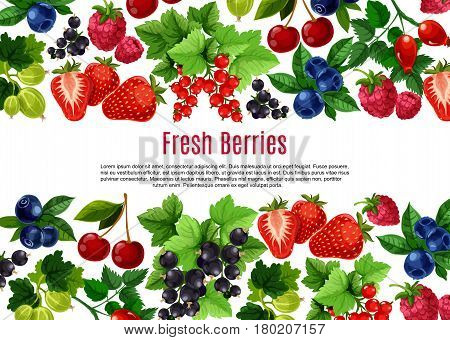 Berry and fruit cartoon poster template. Fresh strawberry, cherry, blueberry, currant, raspberry, briar and gooseberry bunches with green leaf and text layout. Food, drink, fruit dessert menu design
