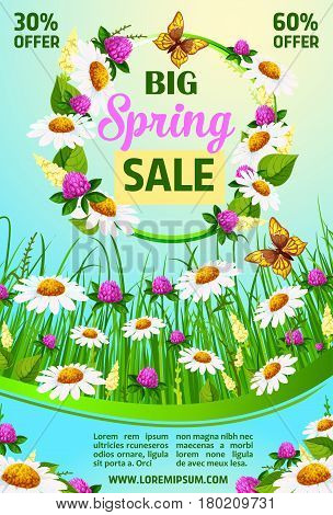 Spring poster for springtime holiday offer. Vector floral design of blooming daisy blossoms on spring grass field. Wreath bunch of clover flowers and orchid bouquets for spring shopping