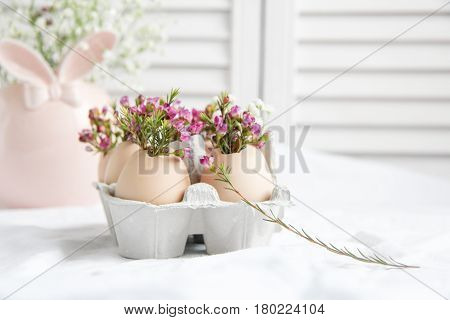 Easter decor - fresh beautiful Flowers in eggshells