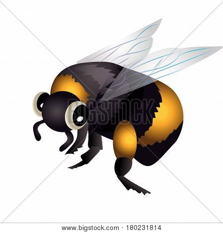 bumblebee in flight. Cartoon bumblebe vector illustration
