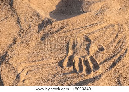The palm print on dry sand in the desert
