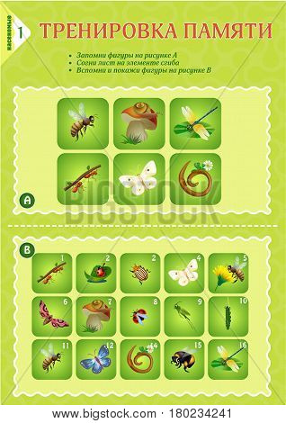 Memory Game Children Insects