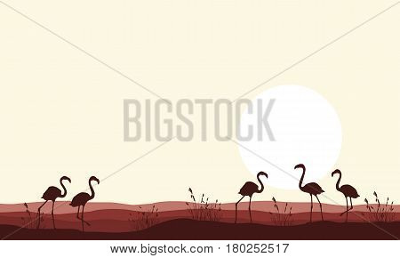 Vector illustration flamingo scene silhouettes collection stock