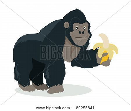 Gorilla cartoon character. Funny big ape with banana in hand flat vector isolated on white. African fauna. Gorilla icon. Wild animal illustration for zoo ad, nature concept, children book illustrating