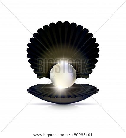 white background and the large black open shell with the big light pearl inside