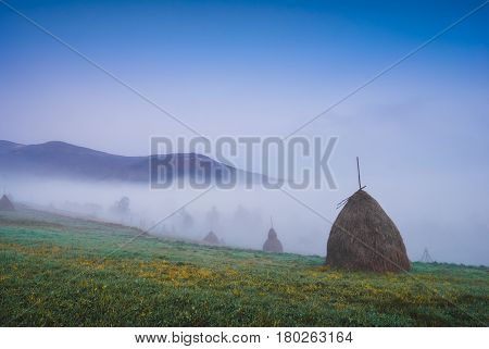 Early Morning In A Misty Mountain