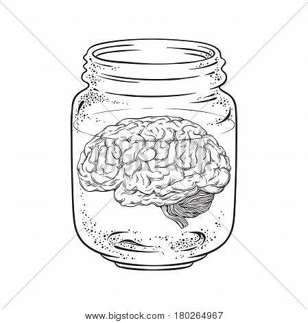 Human brain in glass jar isolated. Sticker print or blackwork tattoo design hand drawn vector illustration.