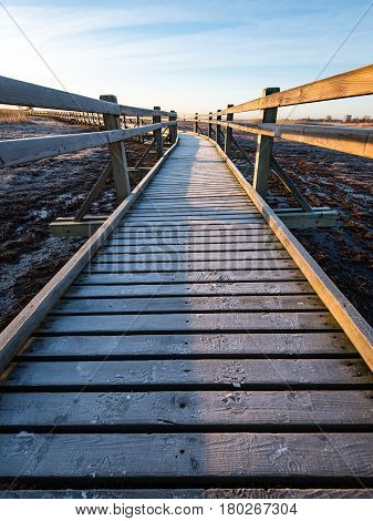 Wooden Boardwalk With Bird Watch Tower In Early Morning