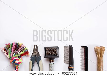 Acessories for the grooming of the dog. Combs and brushes for dogs. Top view. Still life. Copy space