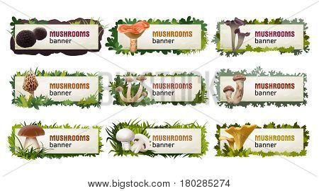 Set of delicious mushroom banners and headers.