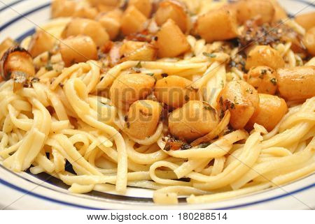 Served Linguini with Scallops & Garlic Sauce
