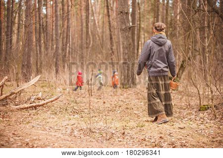 Group of four little kids with a kindergartener walking in the forest. Early spring pine forest hike in waldorf kindergarten.