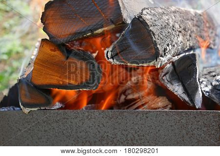 Firewood Burns In Metal Tray Close-up